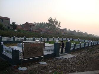 洪湖农村人工湿地项目